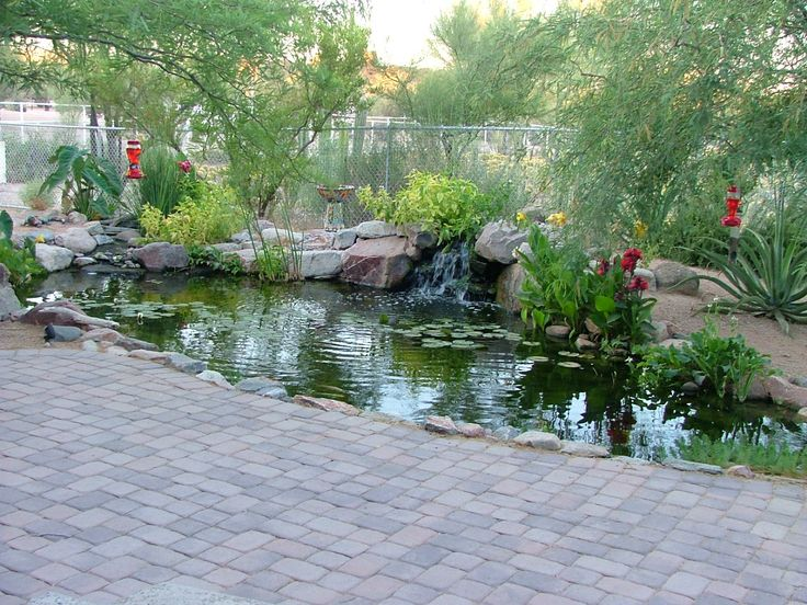 Quackenbush Pond By The Pond Gnome Water Features In The 400 x 300