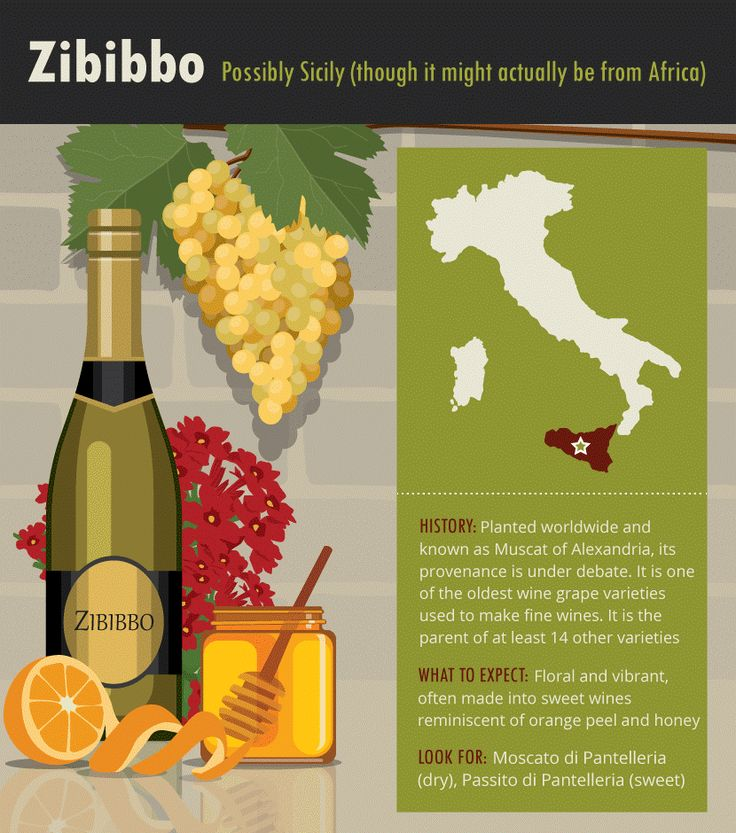 Wine grape variety information and best Italian white wines for Cortese, Zibibbo, Carricante, Fiano, and Verdicchio. Popular vino, aromatic profiles & more.