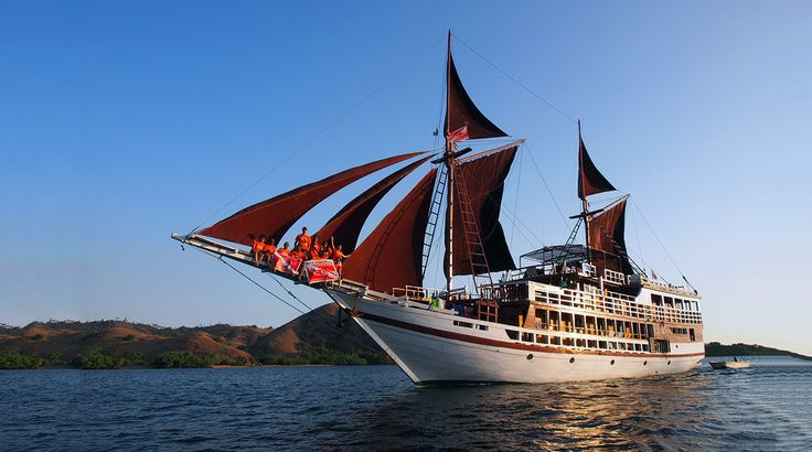 Seamore Papua is a brand-new boat in 2015, and offers affordable luxury scuba diving cruises around the best areas in Indonesia throughout the year. The boat can take up to 18 lucky guests in air-conditioned en suite cabins, sailing to Komodo, Raja Ampat, Maumere, Alor, Ambon, & Banda. The 32m yacht has classic styling and modern facilities. Rates are very competitive and trips sell out fast.