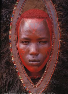 "Traditional Maasai body art, from a photograph by Art Wolfe in ""Tribes"""