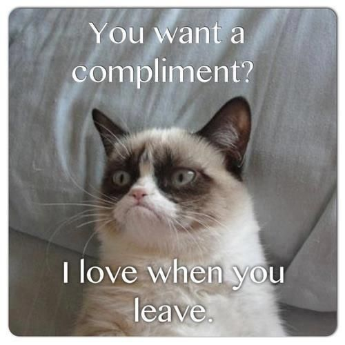 Grumpy Cat gives compliments too ...For the funniest pictures with humorous quotes visit www.bestfunnyjokes4u.com/rofl-funny-pic-of-the-day-8/