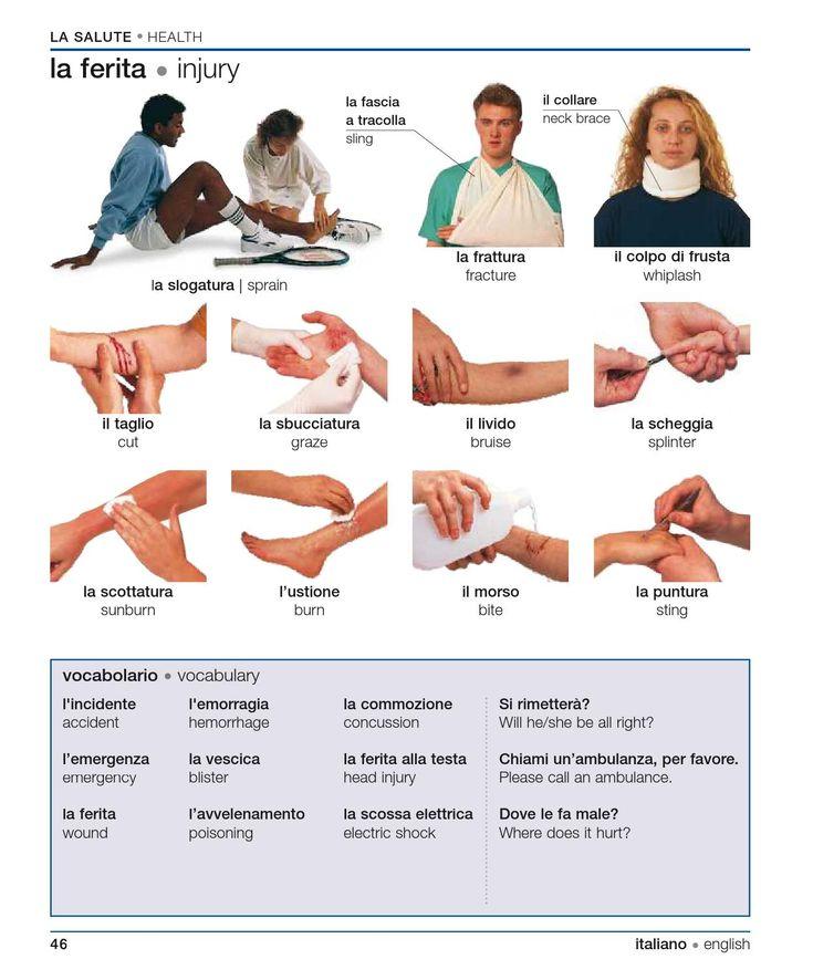 Learning Italian Language ~ Italian english visual bilingual dictionary