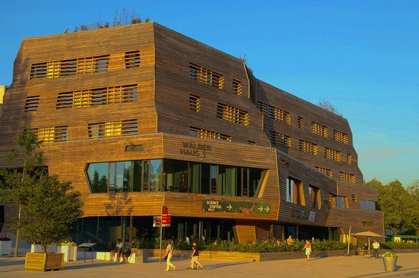 This wooden hotel is a temple to German sustainability and forest conservation.