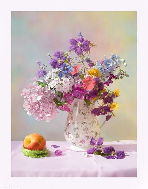 Colorful Still Life photography colorful flowers lavender still life