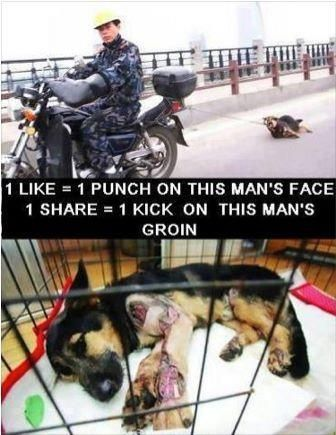 I wish we could like more than once... Animal cruelty is not a joke.