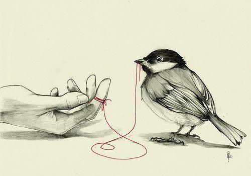 Existe uma linha vermelha, invisível aos olhos, que conecta todos que estão destinados a se encontrar.E não importa o tempo, o lugar ou as circunstancias. Esse fio pode ser apertado ou emaranhado, mas nunca rompido.Provérbio Chinês (Autor desconhecido)