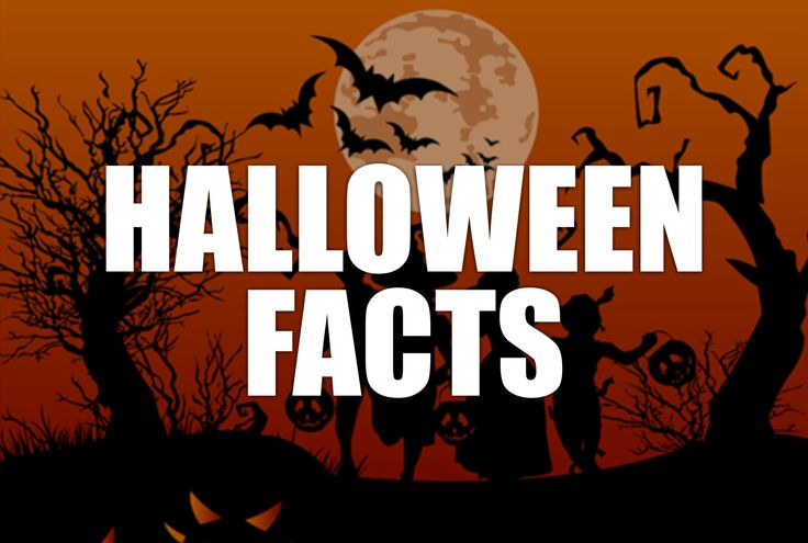 From its origins in ancient Ireland to its modern manifestations, Halloween has been more than just an excuse to eat candy. It has marked the boundary between light and dark, life and death, and plenty and scarcity. Treat yourself to this fascinating list of top 10 Halloween facts to learn more!
