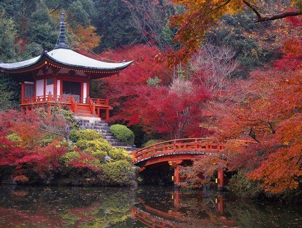 Il giardino dell'istituto giapponese, realizzato dal noto architetto Ken Nakajima