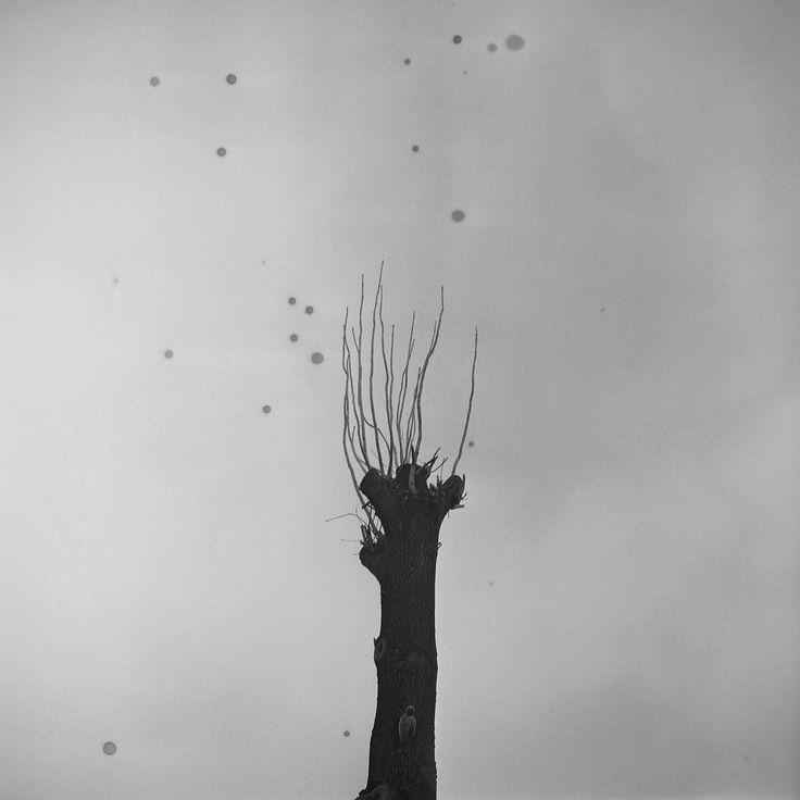 Rura / Krzysztof Racoń @krzysztofra #silesia #documentary #photography #fineart #dark #people #bw