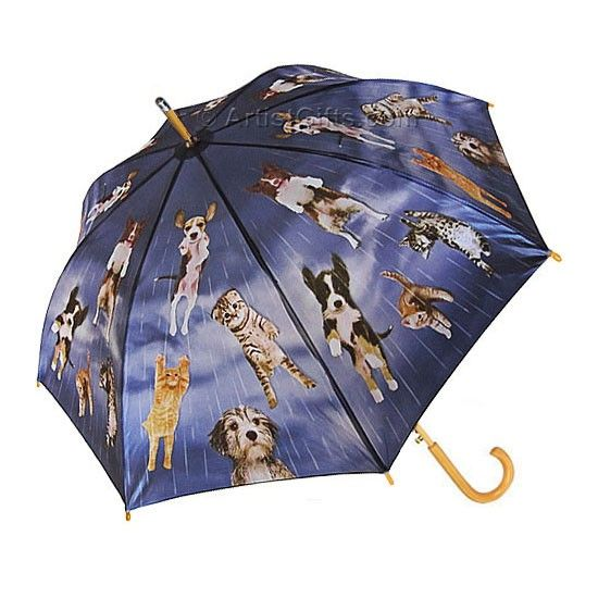 Free Shipping on all automatic umbrellas including this adorable Raining Cats and Dogs umbrella in a stick or compact design, plus tote bags, jewelry, and art style silk scarves.