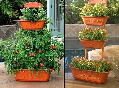 20 Best Images About Garden Ideas On Pinterest Gardens