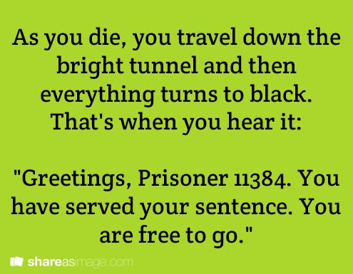 """As you die, you travel down the bright tunnel and then everything turns to black. That's when you hear it: """"Greetings, Prisoner 11384. You have served your sentence. You are free to go."""""""