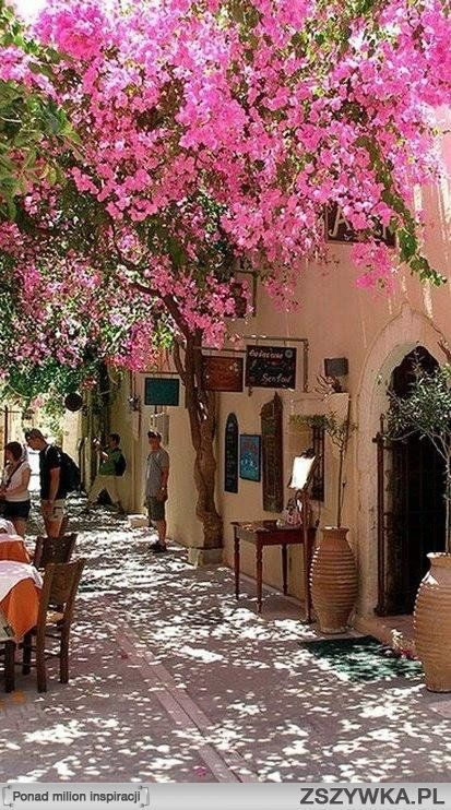 Spring blossoms in Rethymno ~ Crete, Greece
