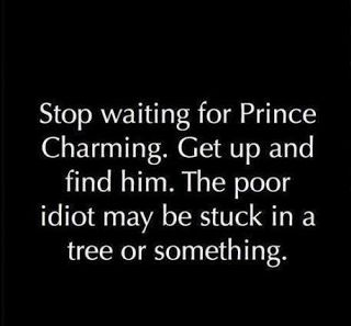 TRIPPING PRINCE CHARMING. http://bit.ly/trippingpc #romance How do you handle it when your best friend thinks she knows exactly what you need in life? Often, and without our knowledge, friends see our love life and relationships as a playing field that they control. Ivy gets a kick out of pretending she's the world's best matchmaker.  Every time she looked in Lillie-Rose's direction, Ivy smiled. She couldn't wait for her cynical friend to meet Nathaniel. Within the few weeks she'd come to…