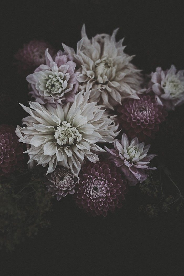 Flowers | Dusty Pink - CHRISTINA GREVE