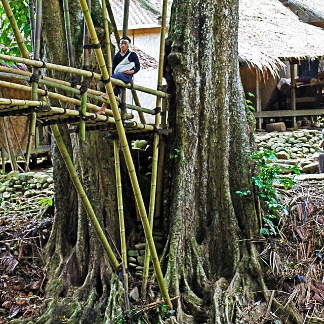Bamboo bridge is one of icons in Baduy village. Baduy's people always build the bridge by their own hands, with raw materials and tools that are taken from nature; bamboo and ijuk. Simple and smart.