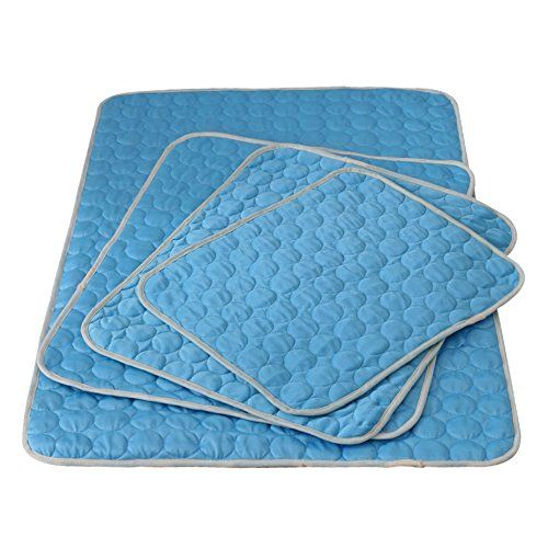 American Kennel Club Akc624blue Club Reversible Bone Large Self Cooling Pet Mat 26 X 20 X 5 Check Out This Great Product Thi Cool Pets Pet Mat Dog Temperature