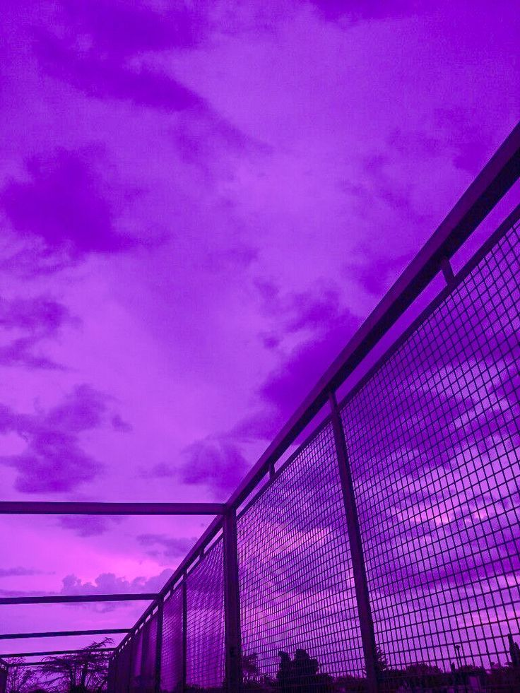 Purple Aesthetic Background Neon