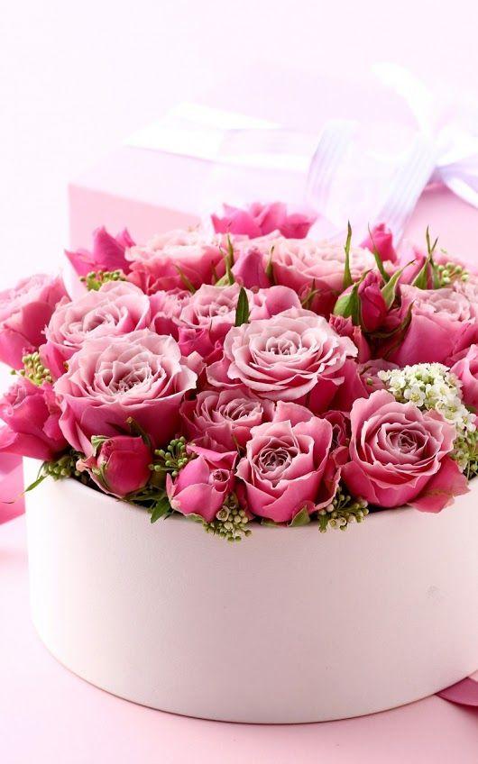 Открытки, фото открыток цветов на день рождения