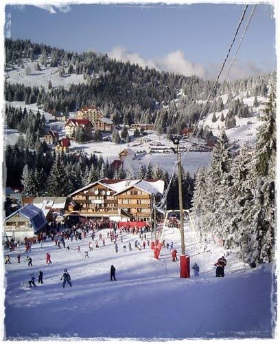 # 8 - Partia mica Vartop #Romania #Park #Winter