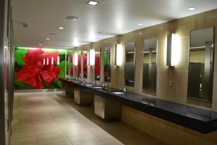 Tampa international airport toilet usa toilets for International decor bathrooms