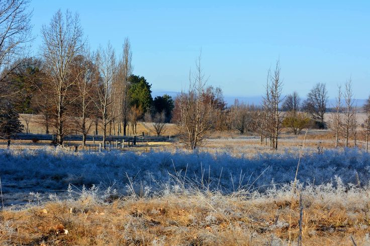 Glen Innes is well known for its frosty mornings.