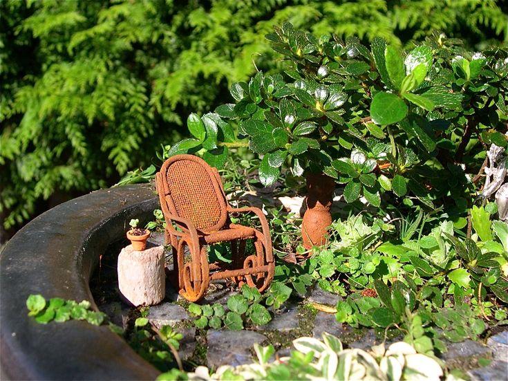 toysmith mini bonsai garden instructions