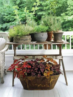 Eye-catching as well as edible, herbs massed together on a table transform a small patch of porch into hardworking acreage.