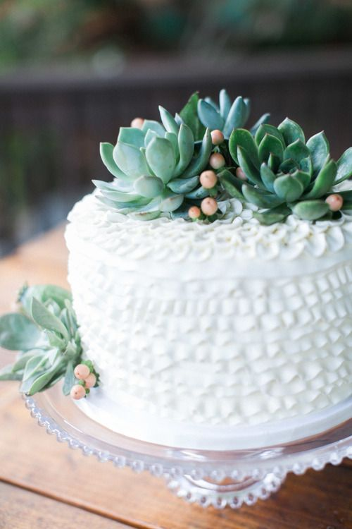 VG Donut & Bakery - Single layer cake with succulent topper and dotted icing detail - Botanical garden outdoor wedding in San Diego County - San Diego Botanic Garden - Encinitas, CA - Kaysen Photography