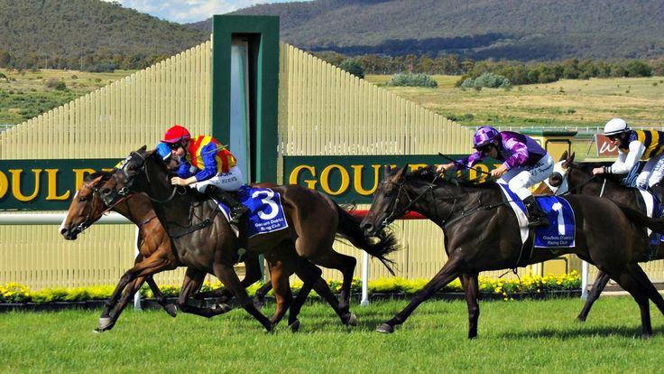 TIGHT: Nathan Berry on Any Day Will Do (inside) edges out his twin Tommy Berry on Taxmeifyoucan (number 13), to win the 2013 Doyle's on th...