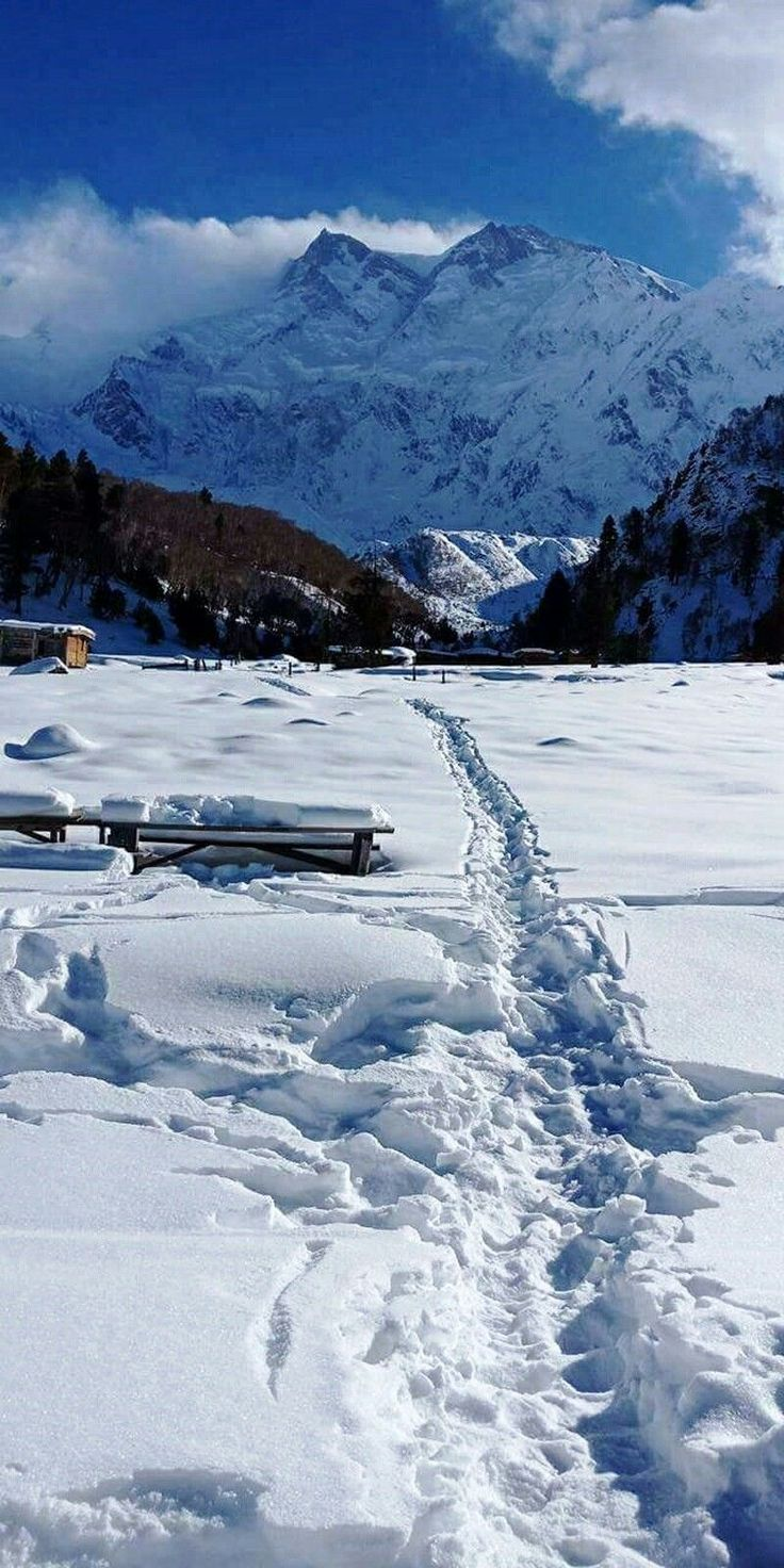 Fairy Meadows, locally known as Joot, is a grassland near one of the base camp sites of the Nanga Parbat, located in Diamer District, Gilgit-Baltistan, Pakistan.  Location: Gilgit-Baltistan, Pakistan. Nearest city: Chillas.
