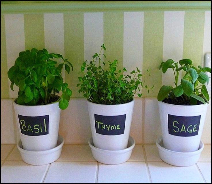 Goodlifeofdesign.blogspot.com: Good Ideas