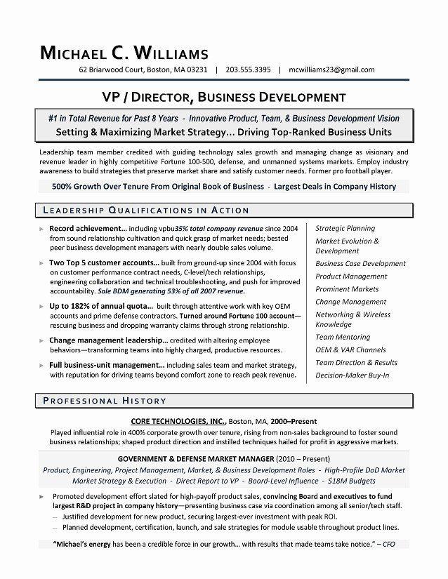 Business Development Executive Resume New Vp Business Development Sample Resume In 2020 Business Resume Professional Resume Samples Resume Writing Services