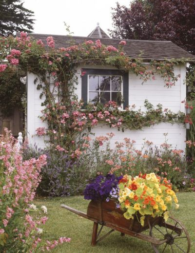 A cute little english cottage ... One of my favorite things is when vines grow on the exterior of a home or building
