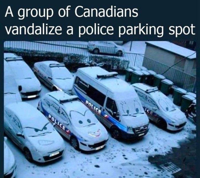 Eine Gruppe Kanadier zerstört einen Polizeiparkpl…