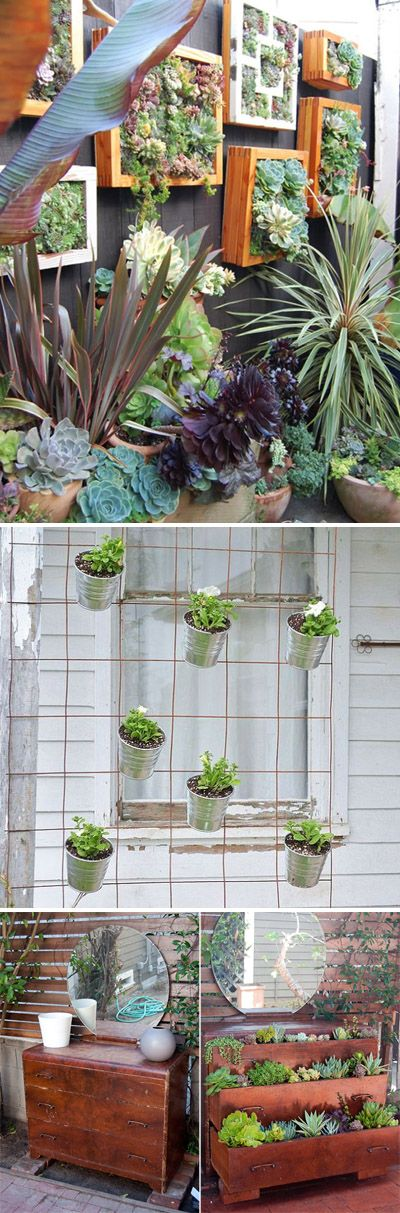 Go Vertical! DIY Gardens for Small Spaces! • Ideas & Tutorials!