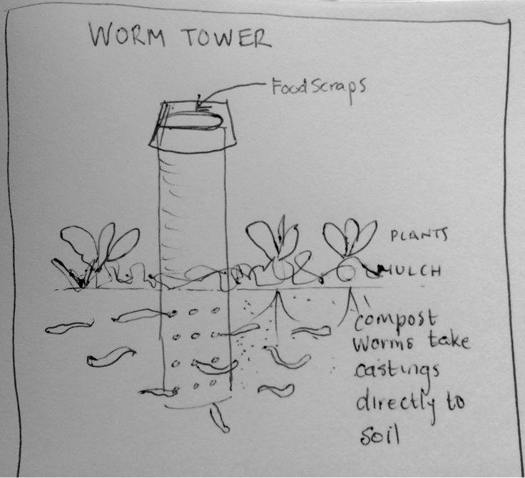 Our Permaculture Life: Worm Towers - a quick and easy way to turn food waste into garden fertiliser - without digging or turning.