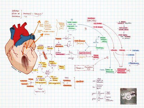 La Chuleta de Osler: Cardiología - Medicina Interna - Urgencias: Infarto agudo de miocardio, abordaje.