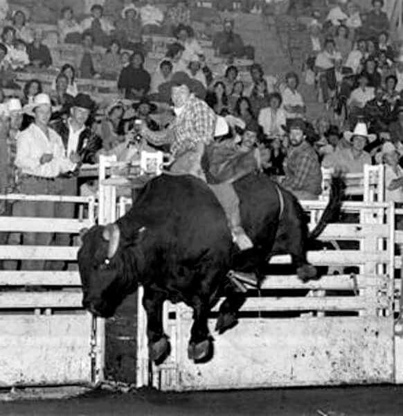 a biography of lane frost an american bull rider Champion lane frost memorial bronze sculpture to the world champion bull  rider lane frost who lost his life competing in the bull riding at cheyenne  frontier.