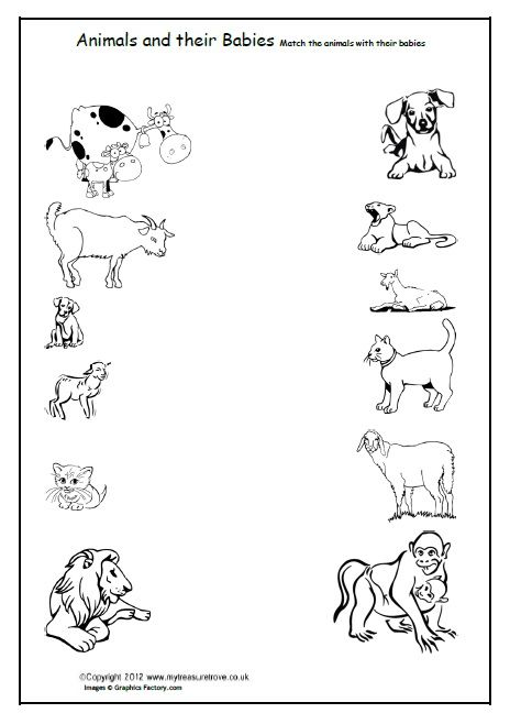 free animals and their babies children match the animals to their babies with this coloring. Black Bedroom Furniture Sets. Home Design Ideas