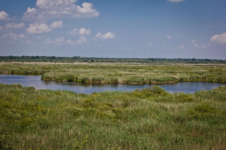 Spettacolare e rilassante. Srebarna Natural Reserve, Bulgaria. UNESCO Site
