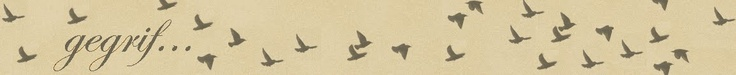 this is my other blog banner (www.gegrif.blogspot.com). Also designed by myself on Picasa 3. On this blog I mainly post Afrikaans poetry (a true passion of mine). I liked the idea of using the birds to almost be like words (flying off the page)...