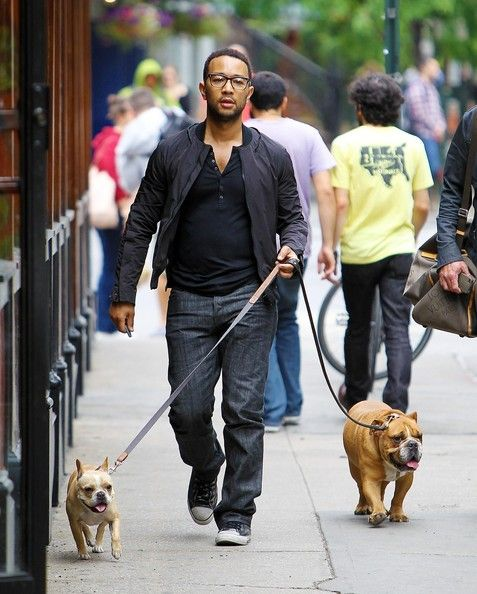 Photo of John Legend & his  Dog Puddy & Pippa