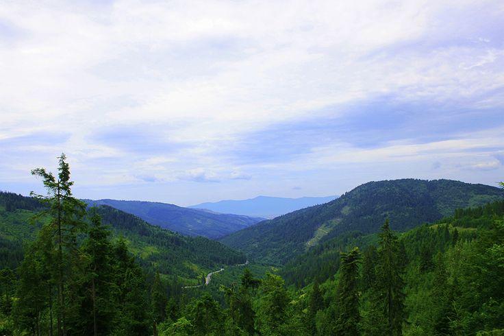 Landscape Izvoru Muresului, Romania