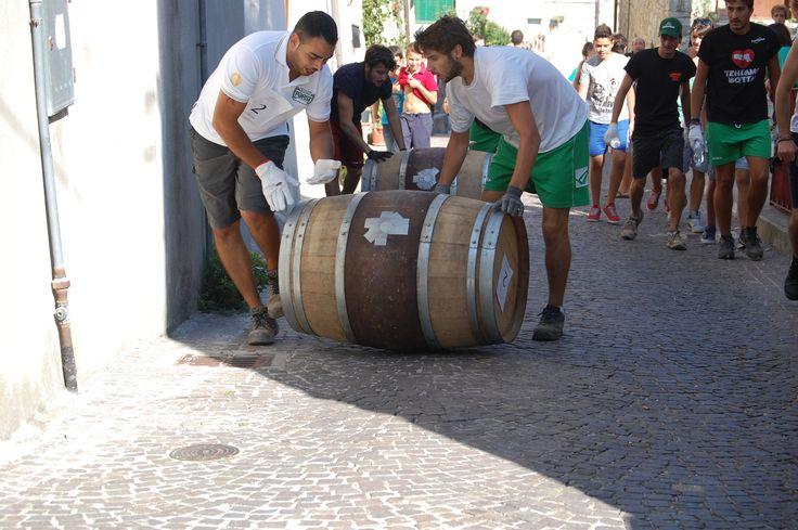 Briganti srl - Botti dal 18per aceto, distillati, liquori e arredamento