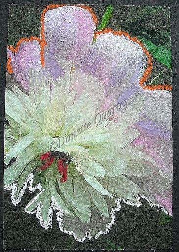 Crazy Card; Dewy Peony
