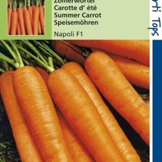 Wortelen Napoli f1 hybride (zaden zomerwortel)