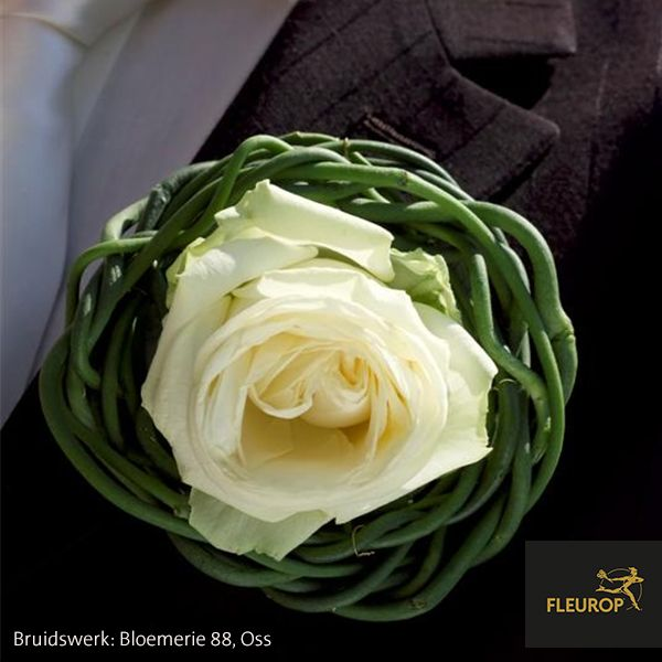 Corsage voor de bruidegom, met een witte roos. Gemaakt door Fleurop bloemist Bloemerie 88 uit Oss.