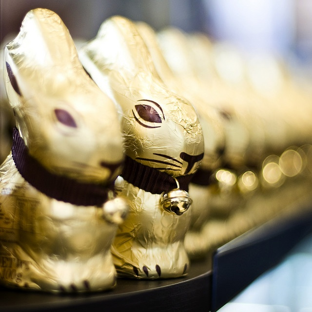 Chocolate bunnies, waiting for Easter. My sister once saved one for about five years.