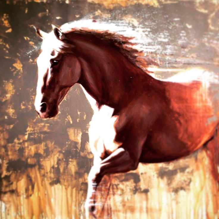 Oil Paintings Of Andalusian Horse